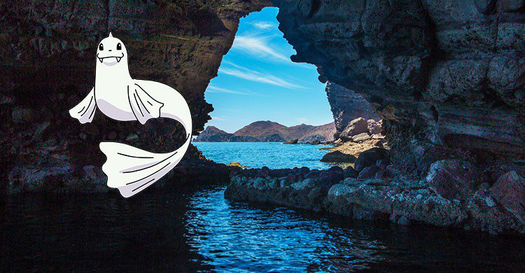 Isla Espiritu Santo, Baja California Sur, Mexico-Tim Buss-Flickr