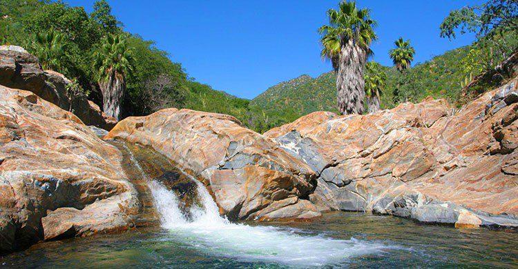 Reserva de la Biosfera Sierra de la Laguna