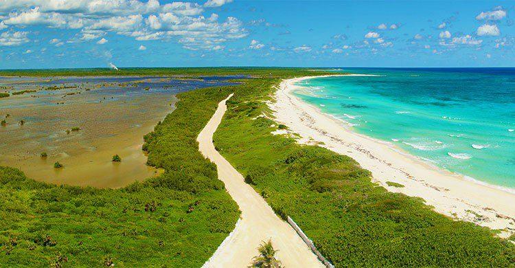 Vista desde el Faro Punta Sur Parque Ecológico. De Cozumel-Tony Sanchez-iStock