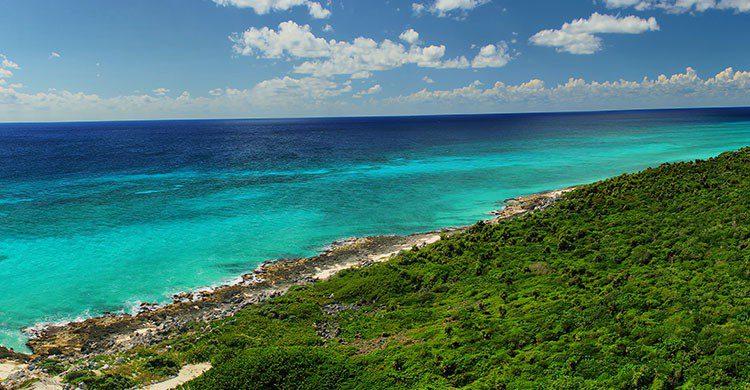 Vista desde el Faro. Punta Sur Parque Ecológico. De Cozumel-Tony Sanchez-iStock