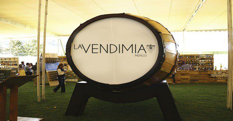 Fuente imagen: lavendimiamexico.com