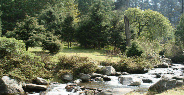 """Fuente imagen: Ecosistemas en el Parque Nacional """"Los Dinamos"""""""