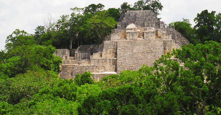 Flickr-In Calakmul, Mexico-Pavel Kirillov-editada-http://bit.ly/2kuJ0o8