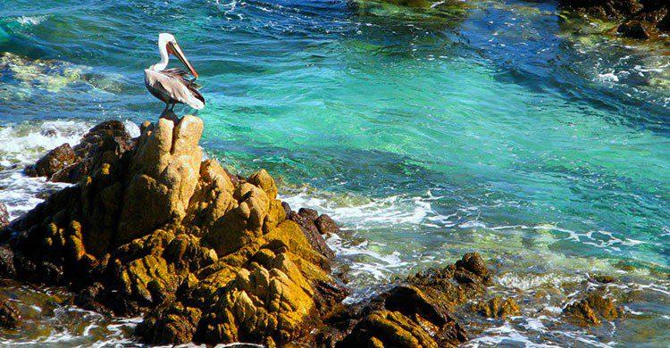 Flickr-Mi roca favorita-Ana Rodríguez Carrington