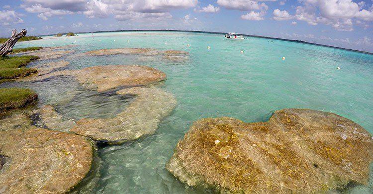 Flickr-Stromatolite: the beginning of life in earth, Bacalar, Quintana Roo-Mex.-Luna sin estrellas