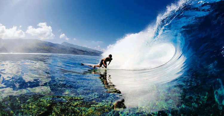Fuente imagen: oceanodiveandsurf.com