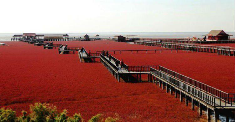 The Stunning playa roja en china