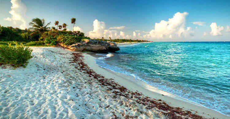 Costa en Cozumel