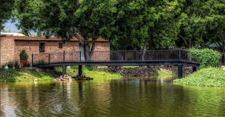 Lago natural hacienda
