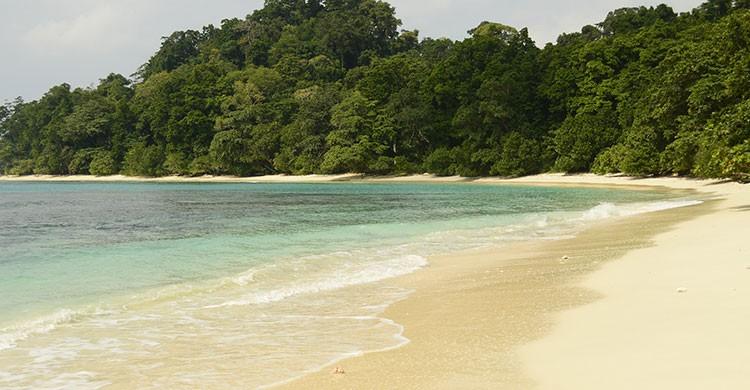 Fuente Imagen: Ana Raquel S. Hernandes-Havelock (Andaman Islands), RTW 2012- Flickr- editada