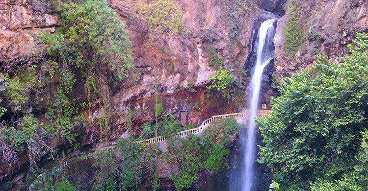 Maravilla natural en Cuernavaca.