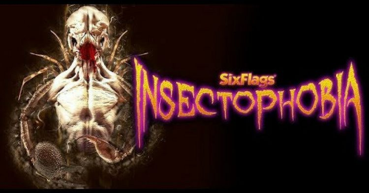 Insectophobia