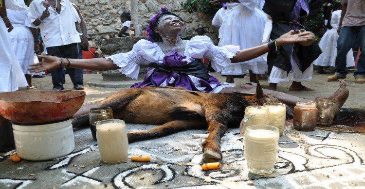 Fet Gede Haíti sacrificio animal