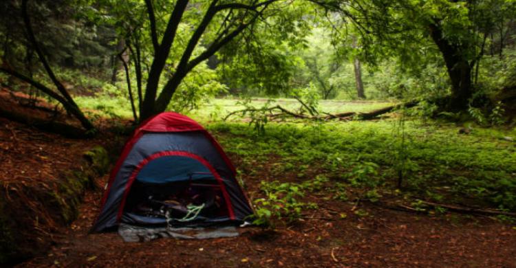 Tienda de acampar en el bosque