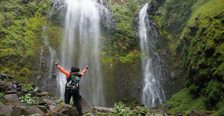 Dos viajeros contemplando cascadas en medio del bosque