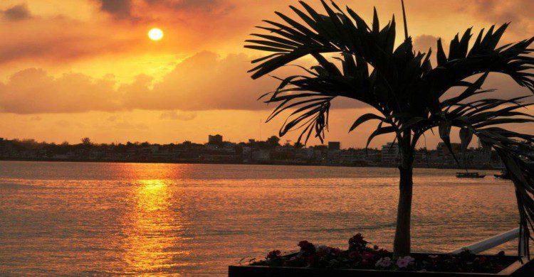 Playa de Tuxpan al atardecer con palmera a contra luz