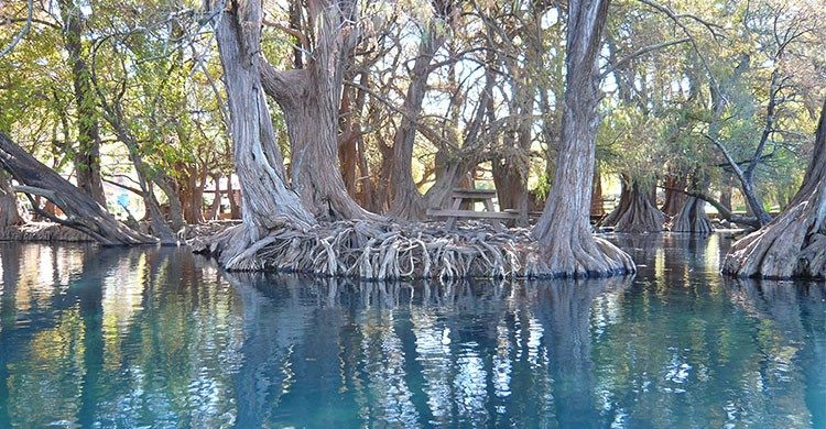 lago-camecuaro