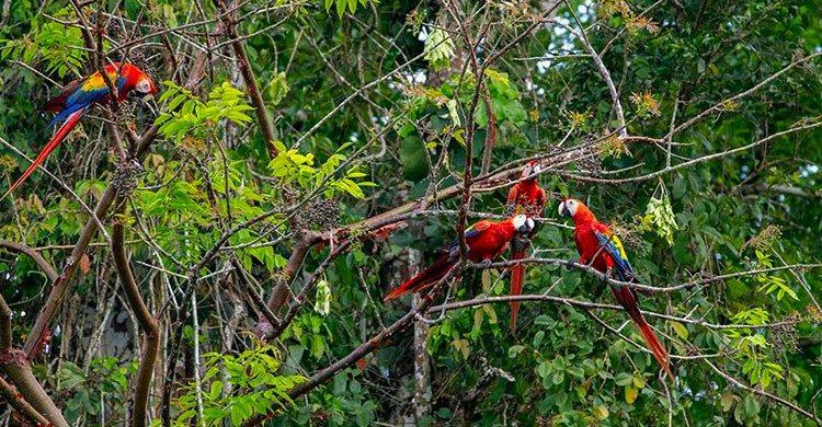 Hermoso destino en el estado de Chiapas.
