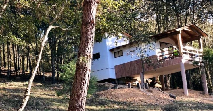 Cabaña blanca en medio del bosque