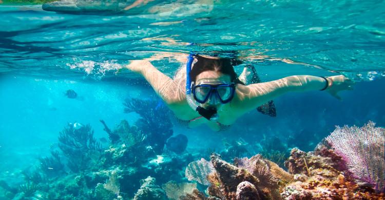 mujer haciendo snorkel en agua azul con arrecife de coral
