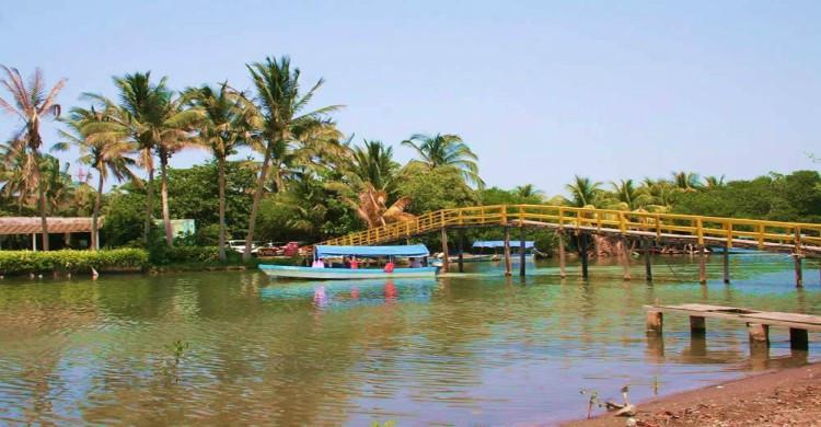 Laguna de Mandinga de día con puente y palmeras